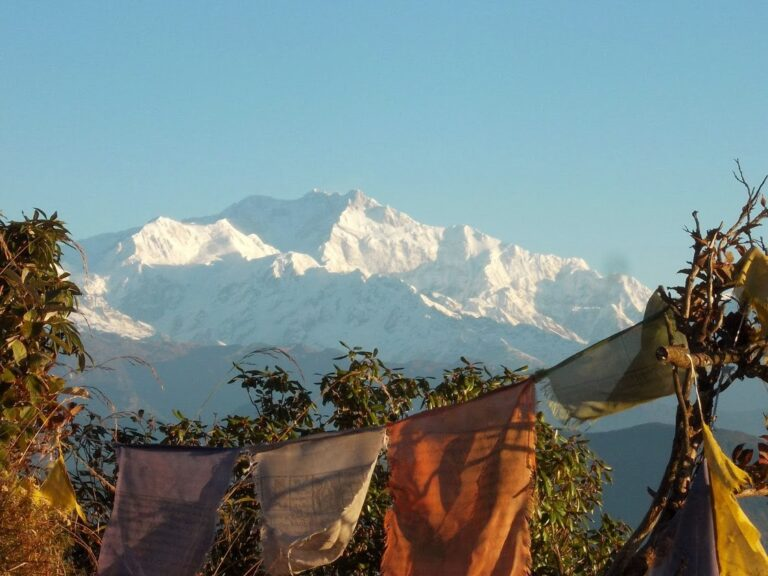 Indie 2013